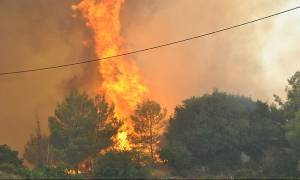 Φωτιά ΤΩΡΑ: Συνεχίζει να μαίνεται η πυρκαγιά στο Κελεφά Λακωνίας