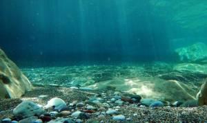 Τρόμος στο νερό: Δέχθηκε εφιαλτική επίθεση από «τέρας» του βυθού και δείτε τι έκανε!