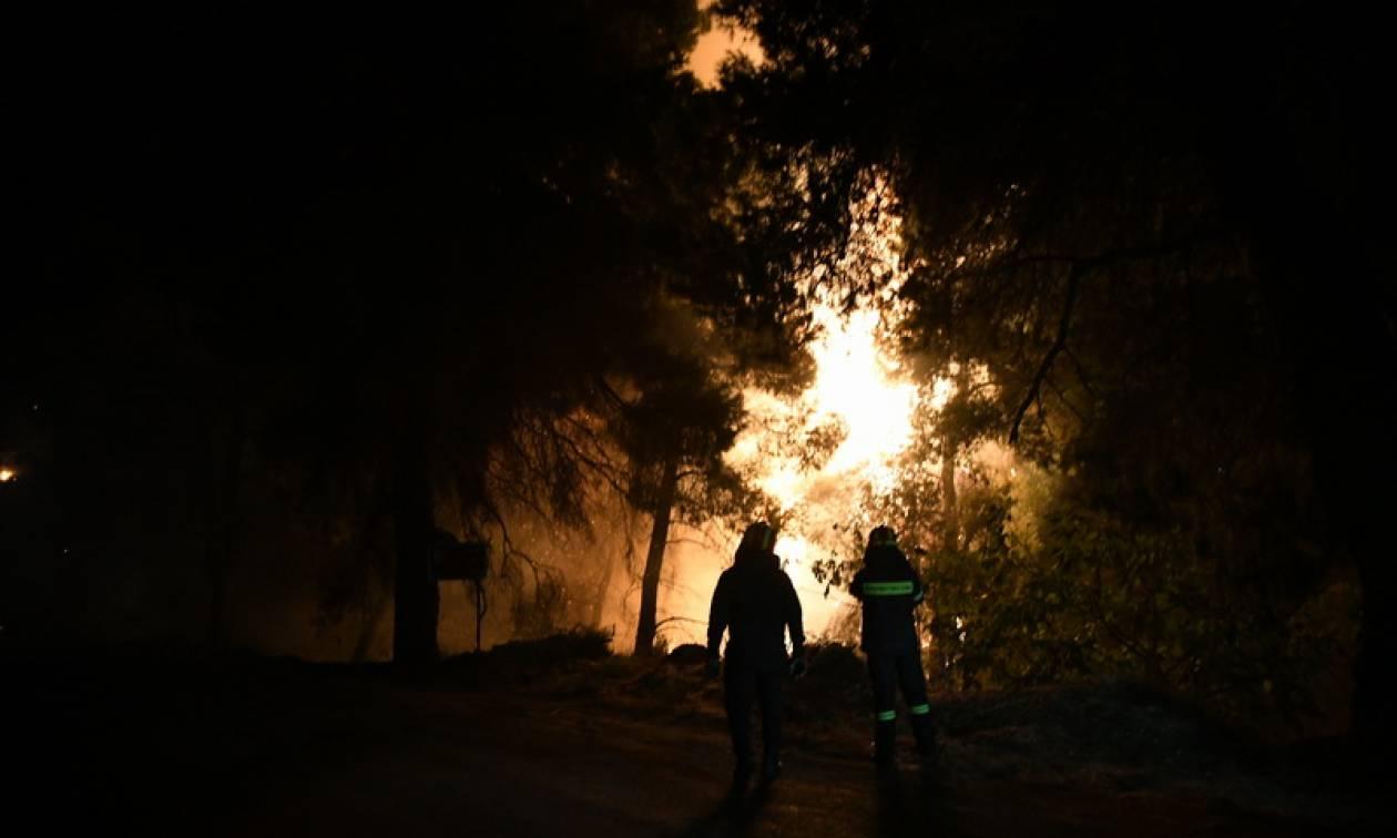 Φωτιά στην Ανατολική Μάνη: Υπό μερικό έλεγχο η πυρκαγιά στο Σιδηρόκαστρο (χάρτης)
