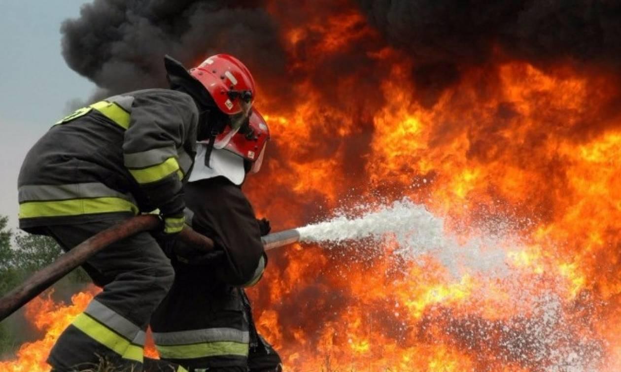 Μεγάλη φωτιά στην Αρκαδία: Κερδίζουν τη «μάχη» οι πυροσβέστες