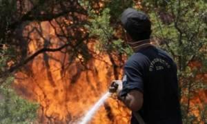 Προσοχή! Υψηλός κίνδυνος πυρκαγιάς σήμερα Τρίτη σε αυτές τις περιοχές