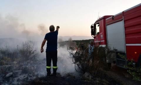 Πολύ υψηλός ο κίνδυνος πυρκαγιάς στην Περιφέρεια Βορείου Αιγαίου