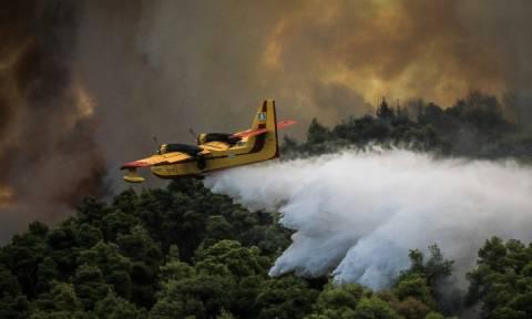 Ο χάρτης πρόβλεψης κινδύνου πυρκαγιάς για την Τετάρτη 19/9 (pic)