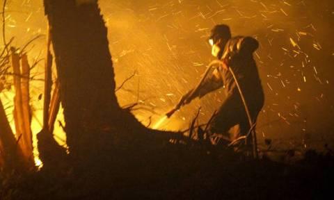 На Закинфосе в населенном пункте Килиоменос произошел крупный пожар