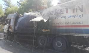 Φωτιά σε φορτηγό στην Αθηνών - Λαμίας - Έκλεισε η Εθνική Οδός (pics-vid)