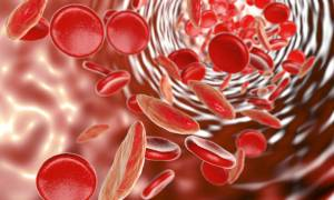 Αναιμία: 6 φρούτα που ενισχύουν την παραγωγή αιμοσφαιρίνης (φωτο)