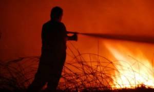 Μεγάλη φωτιά στη Ζαχάρω Ηλείας