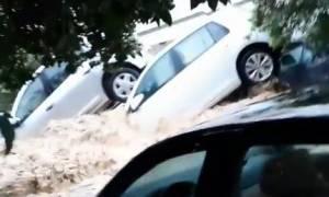 Συγκλονιστικά πλάνα: Ορμητικά νερά παρασύρουν αυτοκίνητα στην Τυνησία (vid)