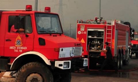 Φωτιά - ΠΡΟΣΟΧΗ! Πολύ υψηλός ο κίνδυνος πυρκαγιάς σε επτά Περιφέρειες