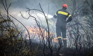 Μάχη με τις φλόγες σε δύο πύρινα μέτωπα στην Ηλεία