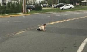 Δεν το χωράει ο νους: Μωρό μπουσουλάει στη μέση του δρόμου! (vid)