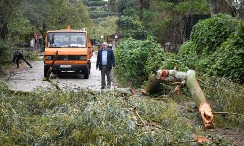Ζορμπάς - Γ.Γ. Πολιτικής Προστασίας: Άμεσα σε κατάσταση έκτακτης ανάγκης οι πληγείσες περιοχές
