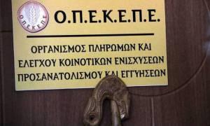 ΟΠΕΚΕΠΕ: Πληρωμές ύψους 2,2 εκατ. ευρώ σε 259 δικαιούχους