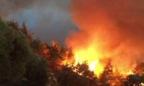 Φωτιά ΤΩΡΑ: Νέο μέτωπο στον Πύργο Λεμεσού