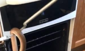 Άνοιξε τον φούρνο και βρέθηκε μπροστά σε ένα τρομακτικό θέαμα (video)