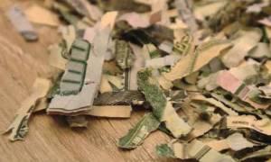 Κλάμα! Μπόμπιρας κάνει... χαρτοπόλεμο 1.000 δολάρια!