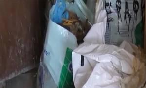 Εικόνες ντροπής στη Δράμα: Έβαζαν σε πλαστικούς σάκους λείψανα νεκρών στο κοιμητήριο της Χωριστής