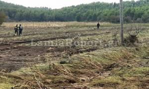 Εύβοια: «Χτενίζουν» την περιοχή για τον εντοπισμό της 58χρονης αγνοούμενης