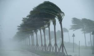 Έρχεται «βιβλική καταστροφή»: Ο τυφώνας–τέρας Μάικλ χτυπά με μανία τη Φλόριντα - Δείτε LIVE εικόνα