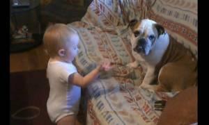 Η φοβερή συνομιλία του μωρού με το bulldog