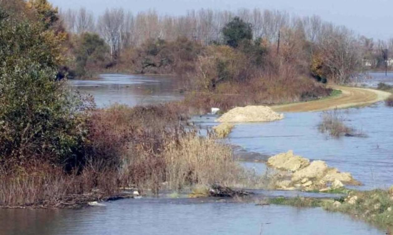 Τριπλό έγκλημα στον Έβρο: Σοκάρουν τα ευρήματα του ιατροδικαστή