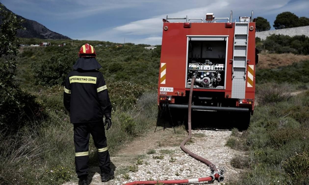 Συναγερμός για φωτιά στη Χαλκιδική: Εκκενώθηκε παιδικός σταθμός