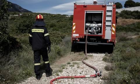 Fire near Nea Moudania, Halkidiki; nursery school evacuated