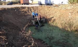 Ραγδαίες εξελίξεις: «Χτενίζουν» ξανά την τάφρο όπου βρέθηκε το κρανίο στην Πρέβεζα (pics&vid)
