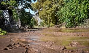 Εύβοια: Έσβησαν οι ελπίδες για τον εντοπισμό της αγνοούμενης από τον κυκλώνα Ζορμπά