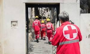ΕΕΣ: Καταβλήθηκε η πρώτη δόση οικονομικής ενίσχυσης στους πληγέντες των πυρκαγιών