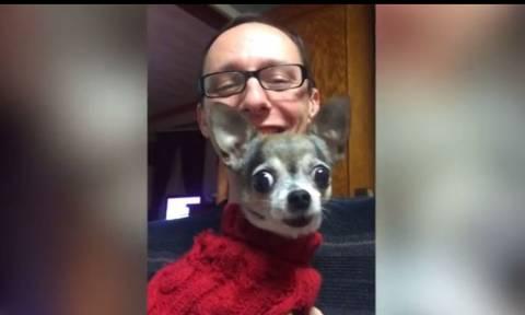 Το απίστευτο… τραγούδι ενός σκύλου (vid)