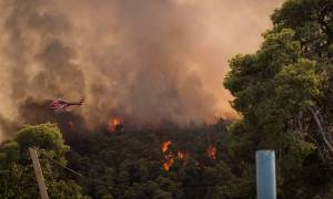 Αντιδήμαρχος Σιθωνίας Χαλκιδικής στο CNN Greece: Η φωτιά είναι ανεξέλεγκτη