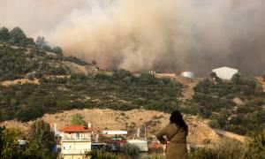 Φωτιά Σιθωνία: Η καταστροφή από ψηλά - Οι καπνοί έφτασαν μέχρι την Εύβοια (pic)