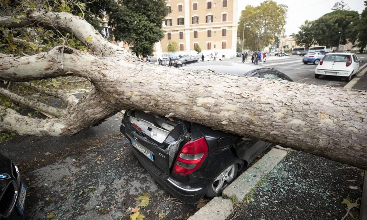 Σφοδρή κακοκαιρία με επτά νεκρούς χτυπά την Ιταλία - «Βυθίστηκε» η Βενετία (vids+pics)