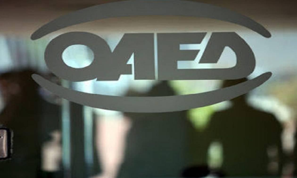 ΟΑΕΔ: Επεκτείνεται σε νέους δικαιούχους το εποχικό επίδομα ανεργίας - Δείτε αν το δικαιούστε