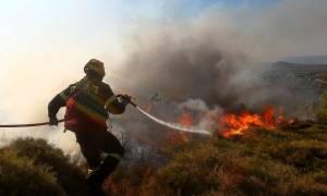 Μεγάλη πυρκαγιά μεταξύ Κρούστα και Μάλες στο Λασίθι