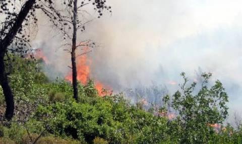 Μεγάλη πυρκαγιά έξω από τη Λεμεσό: Έκλεισαν δρόμοι