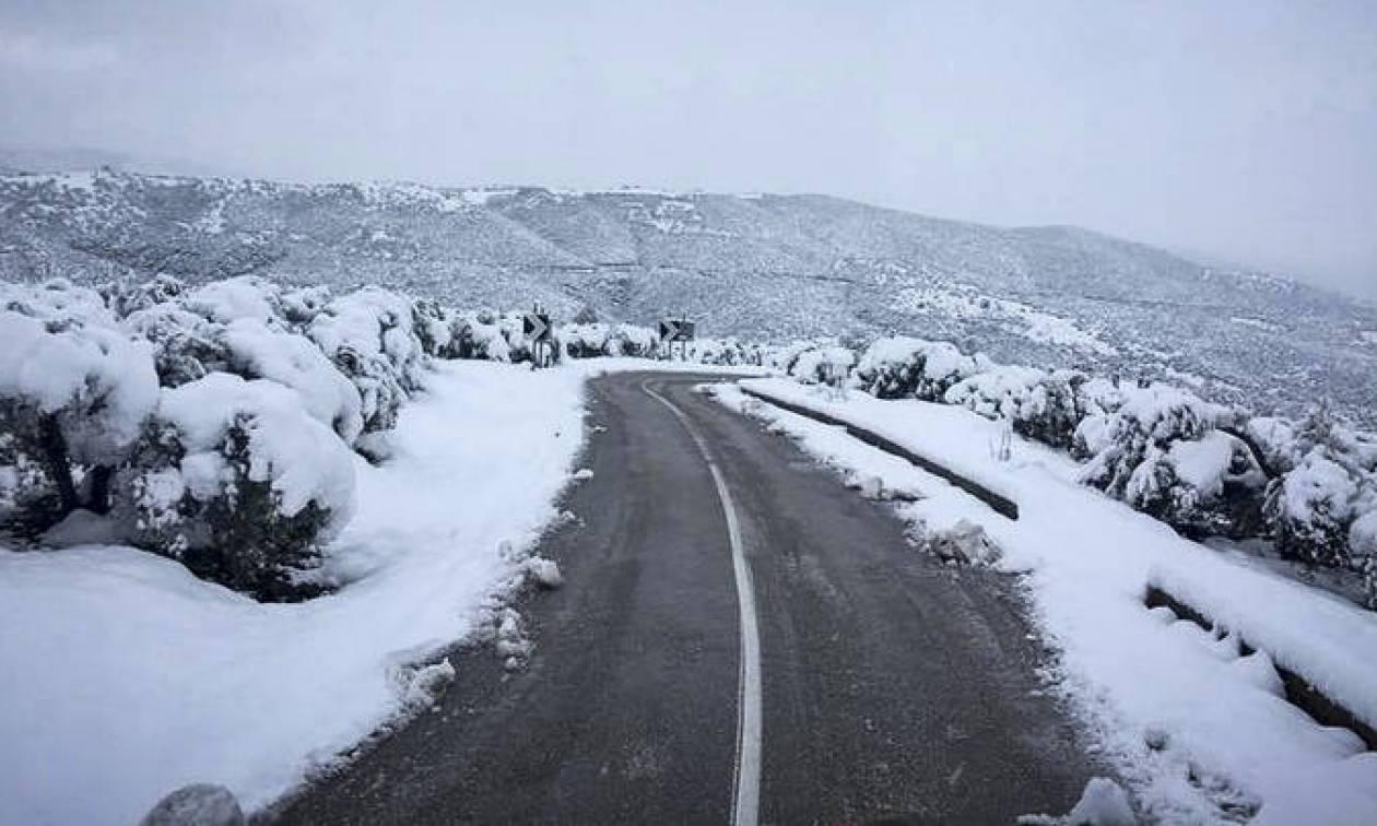 Καιρός: «Ερχεται κρύο, φέρνει χιόνια και βροχές» το μήνυμα του Τάσου Αρνιακού