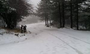 Ερχεται κακοκαιρία! Πού θα χιονίσει; Η ανάλυση του Τάσου Αρνιακού (video)