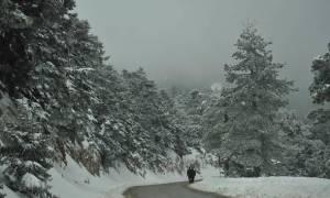 Ξεκίνησαν οι χιονοπτώσεις! Ραγδαία επιδείνωση τις επόμενες ώρες! Η ανάλυση του Τάσου Αρνιακού (vid)