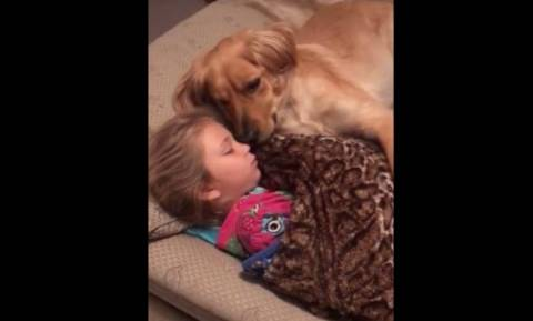 Ο πιο γλυκός ύπνος παιδιού και σκύλου (vid)