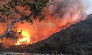 Φωτιές Καλιφόρνια: Αυξάνεται συνεχώς ο αριθμός των νεκρών - Πάνω από 1.000 αγνοούμενοι (pics+vids)