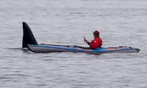 Εικόνες ΣΟΚ: Κωπηλάτης έρχεται αντιμέτωπος με μια φάλαινα - δολοφόνο (vid)