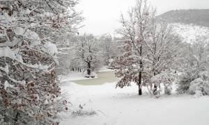Κακοκαιρία: Δείτε LIVE πού χιονίζει στην Ελλάδα