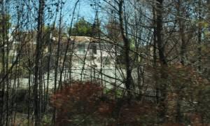 Συγκίνηση στη Σμύρνη: Φύτεψαν 100 δέντρα στη μνήμη των θυμάτων της φονικής πυρκαγιάς στο Μάτι