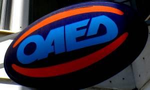 ΟΑΕΔ: Ξεκίνησαν οι αιτήσεις για την πρόσληψη 6.000 ανέργων - Ποιους αφορά