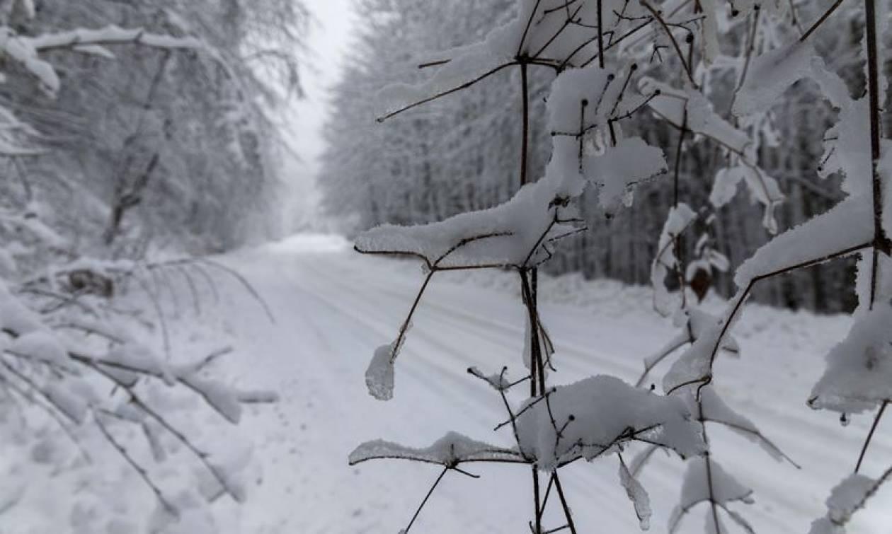 Καιρός ΤΩΡΑ: Δείτε ζωντανά πού χιονίζει (Live cam)