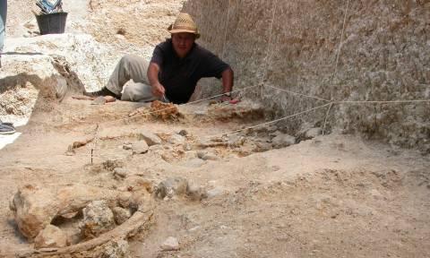 Απίστευτη ανακάλυψη στην Αλγερία: Στο «φως» λίθινα εργαλεία 2,4 εκατ. ετών