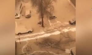 Οι ουρανοί τρελάθηκαν: Πέφτει κίτρινο χιόνι στην Κίνα! (vid)