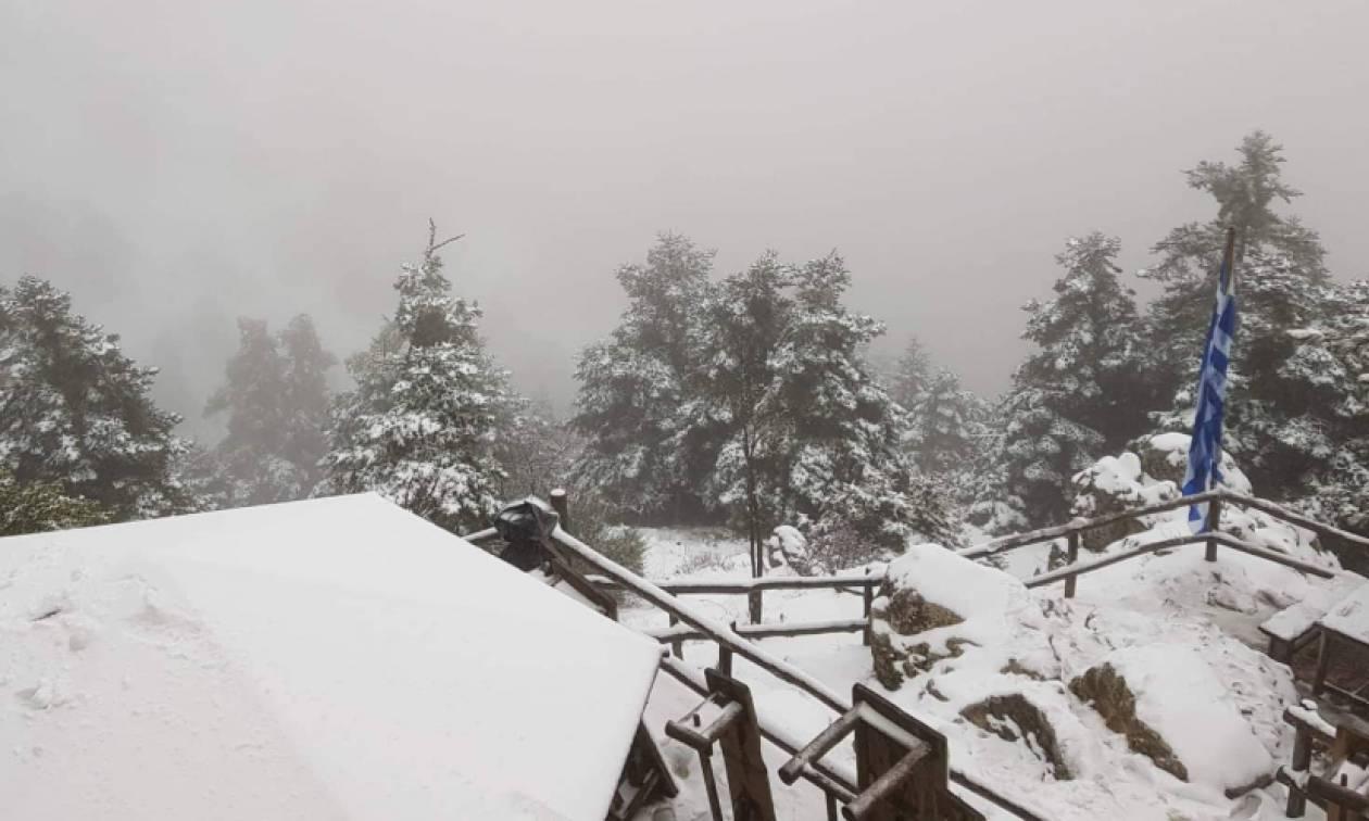 Συνεχίζεται η χιονόπτωση στην Πάρνηθα: Όλα... άσπρα στο Καταφύγιο Μπάφι (video)